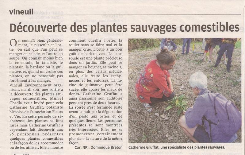 Nr 2018 09 08 cueillette plantes sauvages 1